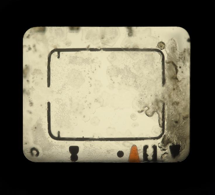 Meggan Gould: Photographs Viewfinders, Camera S Viewfinder, Analog Cameras, Camera Apparatus, Gould Photographs, Meggan Amazing, Gould Deconstructs, Viewfinder Photography