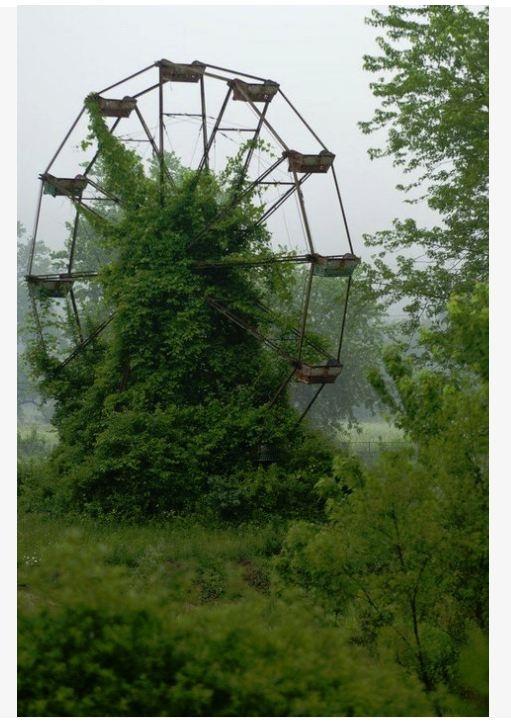 abandoned ferris wheel - north carolina
