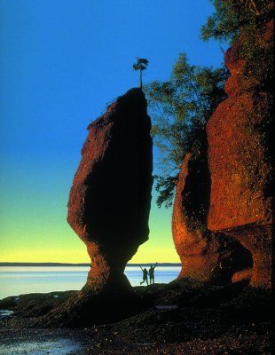 Northern Lights PLUS the highest tides in the world at The Hopewell Rocks, one of the world's great natural wonders makes for an experience of a lifetime.