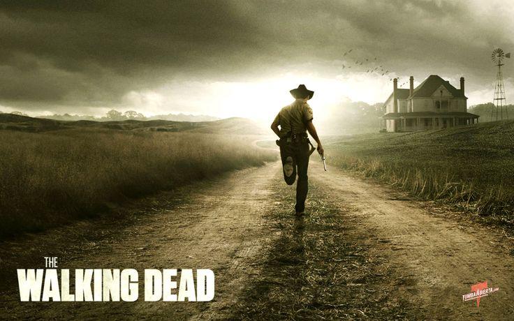 The Walking Dead: The Walks Dead, Amazing Photography, Dead Series, The Walking Dead, Great Love, Cute Ideas, Dramas, Walkingdead, Walks Dead 3