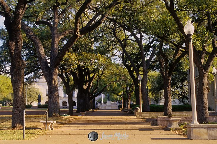 university of texas at austin campus west mall - Google Search