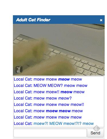 Adult Cat Finder, Connect With 'Hot Local Cats' in Your Area