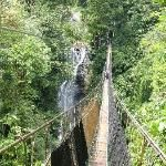 Things to Do in Quepos/Mauel Antonio, Costa Rica- pictured Los Campesinos Reserve