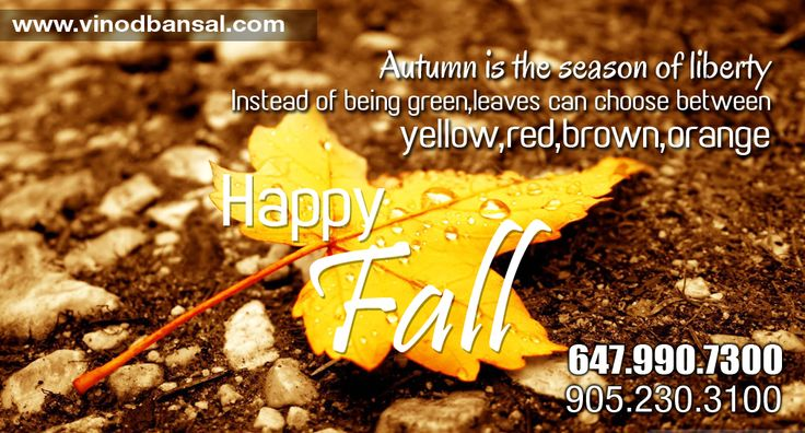 Happy Fall Season To All... #happyfallseason #fallseason