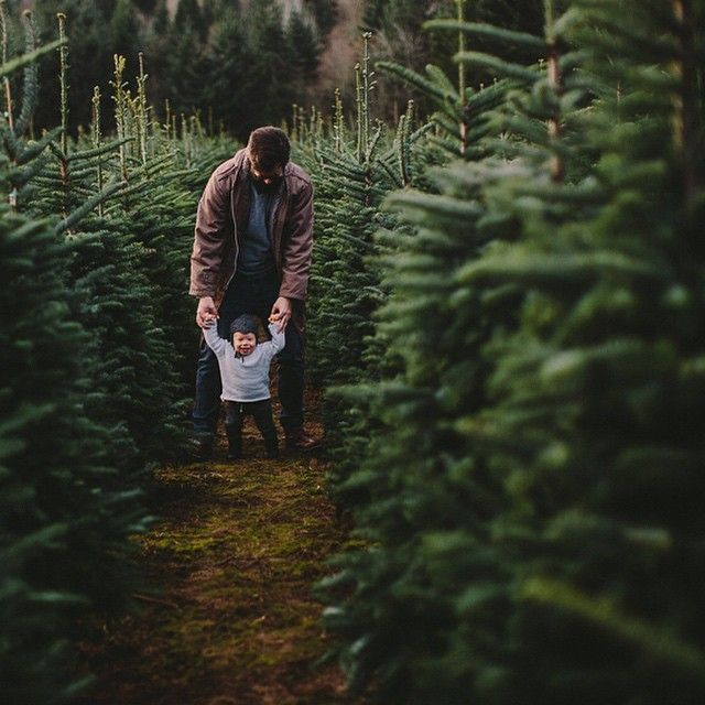 I Can T Wait To Be A Dad Christmas Tree Farm Pictures Christmas Tree Farm Photos Christmas Family Photos