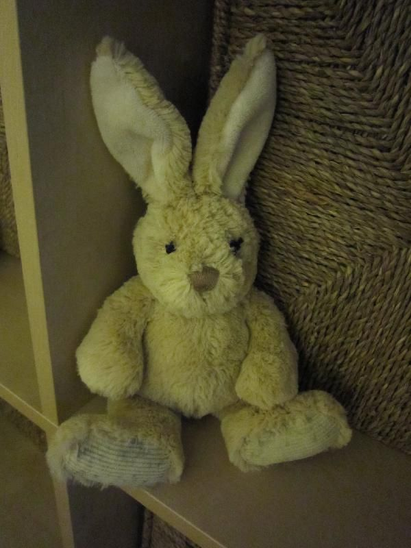 Found on 02 Jan. 2016 @ WR14 . Bunny found on a path in Malvern Wells behind Homestead Close and on the way to St Wulstans Nature Reserve. No eyes so I have sewn some in. Visit: https://whiteboomerang.com/lostteddy/msg/6ee26f (Posted by Sara Stewart on 13 Jan. 2016)