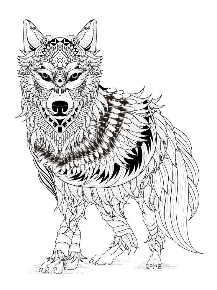 Coloriage Adulte Loup.Coloriage Renard Colorier