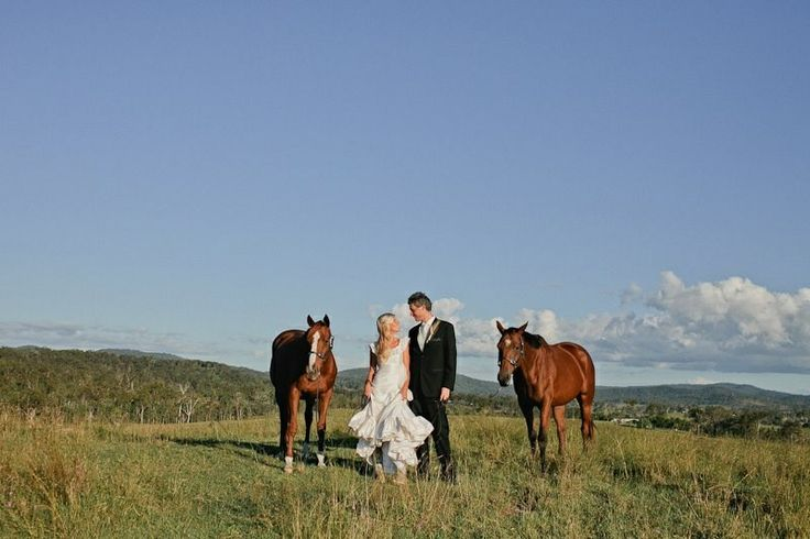 Our horses Summer and Buck were very much a part of our wedding day