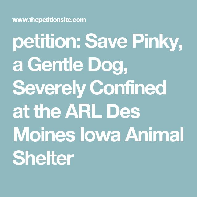 petition: Save Pinky, a Gentle Dog, Severely Confined at the ARL Des Moines Iowa Animal Shelter