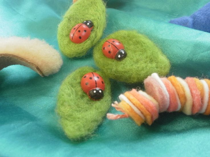 caterpillars and ladybirds