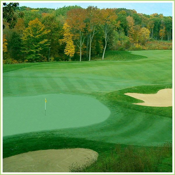 Best Golf Pinterest: 18 Best SW Michigan Golf Courses Images On Pinterest