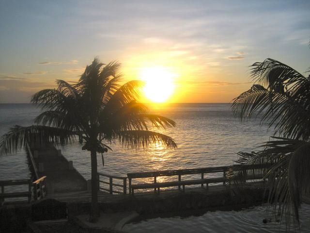 Learn about sport fishing in Honduras and the species you might find in its waters. http://gocentralamerica.about.com/od/topattractions/fl/Sports-Fishing-in-Honduras-Where-to-Go.htm