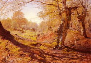 Seasons_In_The_Wood printemps - (Andrew Maccallum)