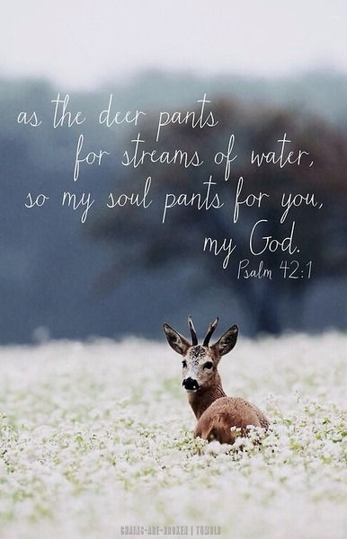 PSALM 42:1 42. Like a deer drinking from a stream, I reach out to you, my God.