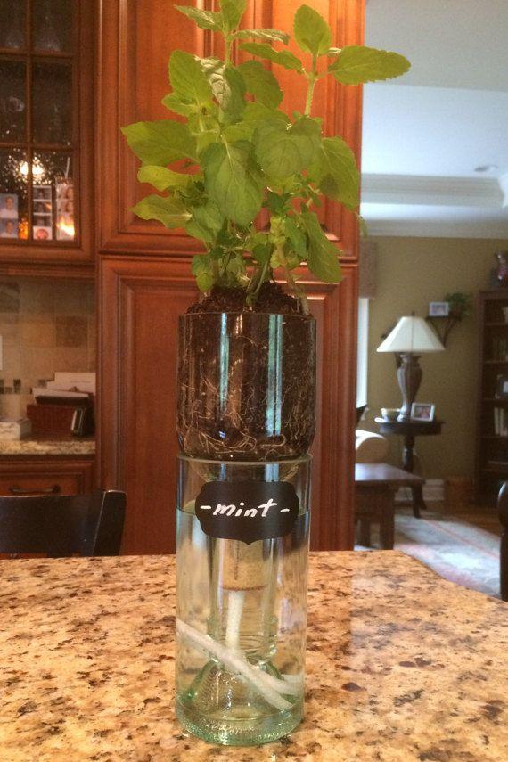 Wine Bottle Self Watering Planter Hydro by WinelessCreations