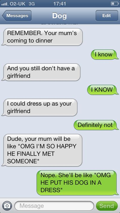 OMG HE PUT HIS DOG IN A DRESS   textfromdog.tumblr.com