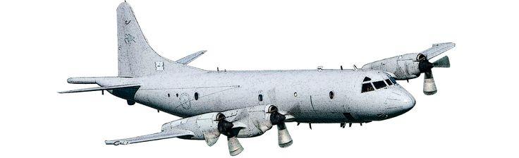 P3C Orion Royal Australian Air Force Aircraft Participating Aircraft   International Fleet Review 2013