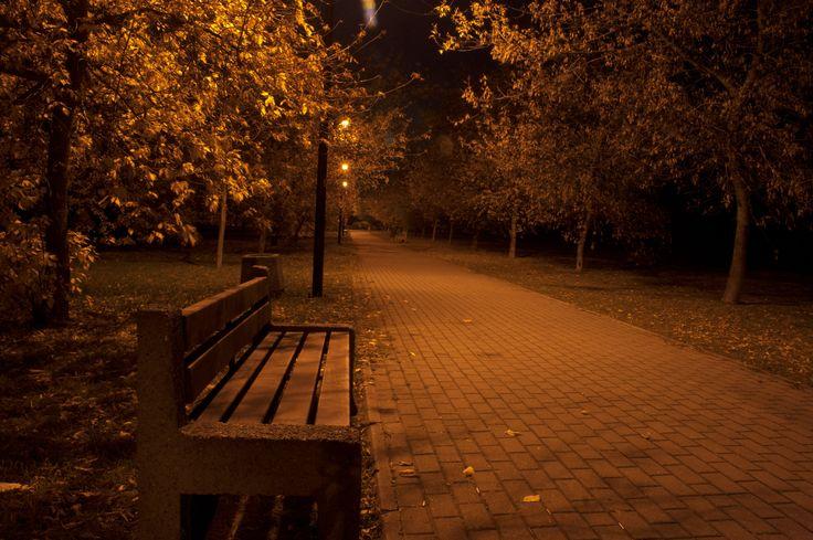 Park in Gdańsk by night