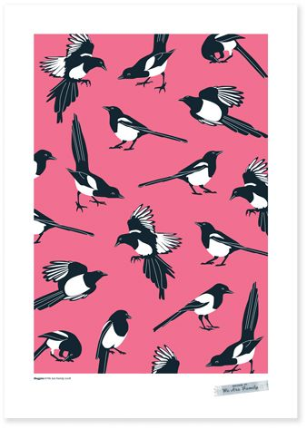 Magpies, I just have a real love for magpies as an animal, but i thought this was a beautiful image in general, the stark contrast between,the black and white of the animal, to the deep pink back ground