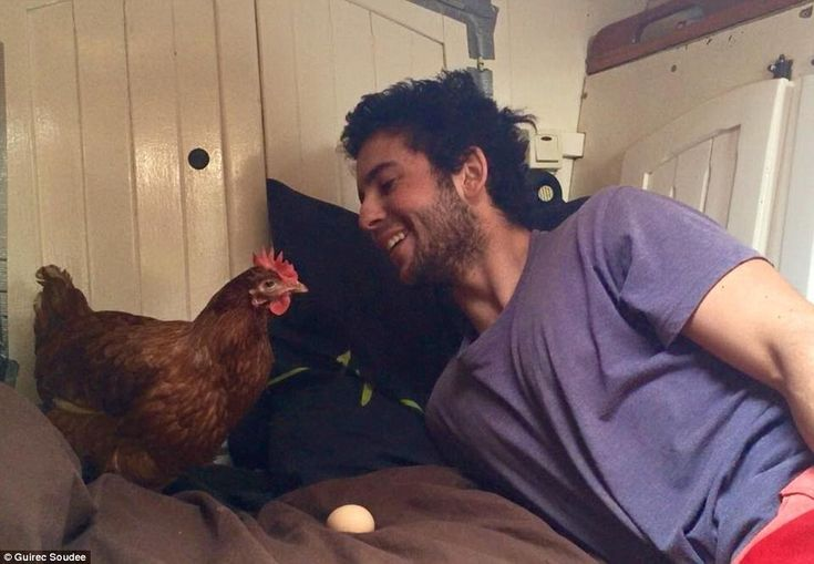 Guirec Soudee (right), from Brittany, France, and his hen Monique (left) have been sailing around the world since 2014