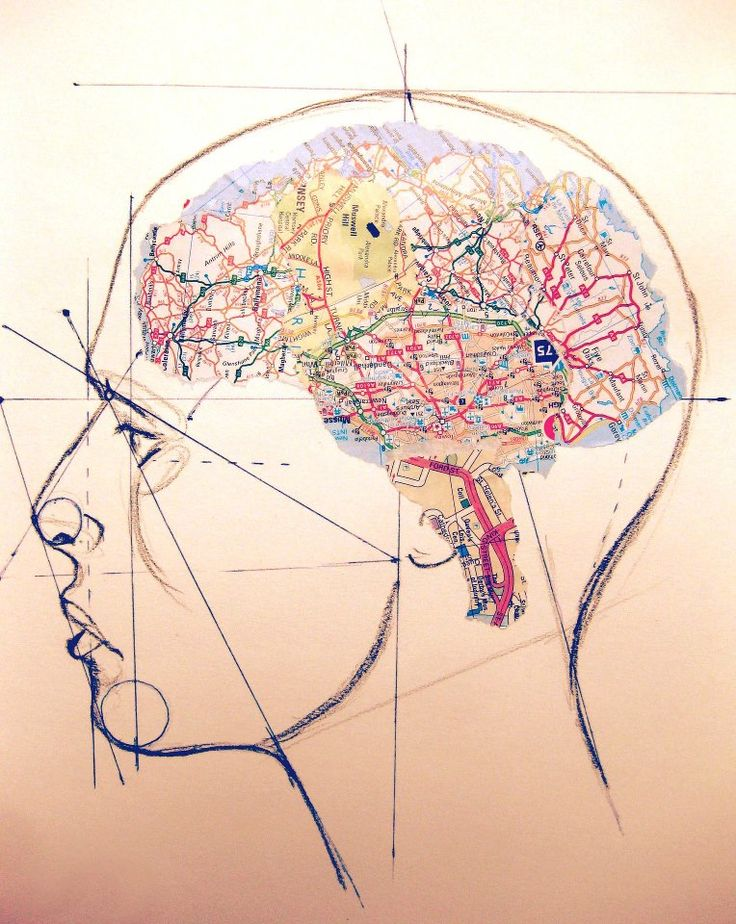 """Mind map"" by Paul Holloway. Winner of the brain art competition in Beijing 2012, category ""Humorous Brain Illustration"""