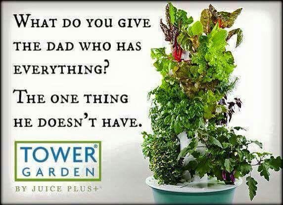 120 best TOWER Garden images on Pinterest   Tower garden, Vegetable ...