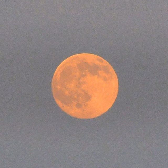 赤い満月🌕 2016年7月19日 #月 #満月 #moon #instagram