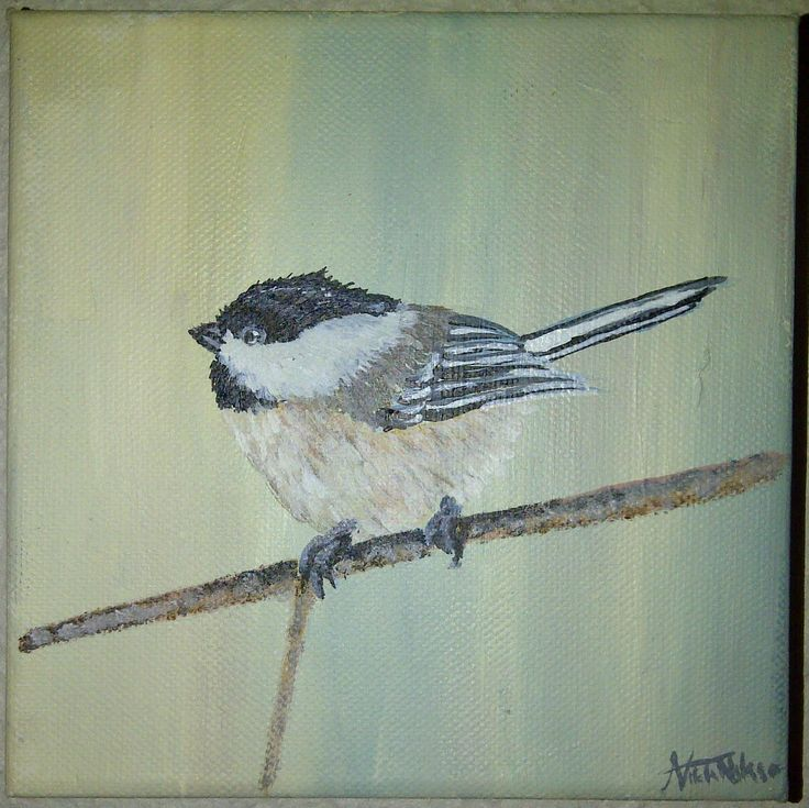 Small bird 15cm x 15cm Canvas Acyrlic
