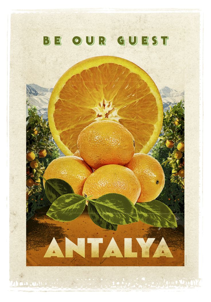 Antalya has some of the best oranges in Turkey.