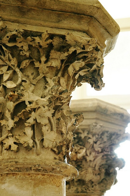 Carved acanthus leaves on a Corinthian column