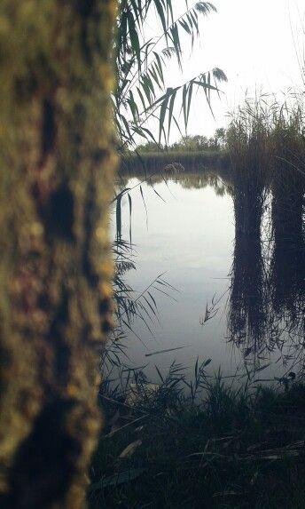 ......at lake
