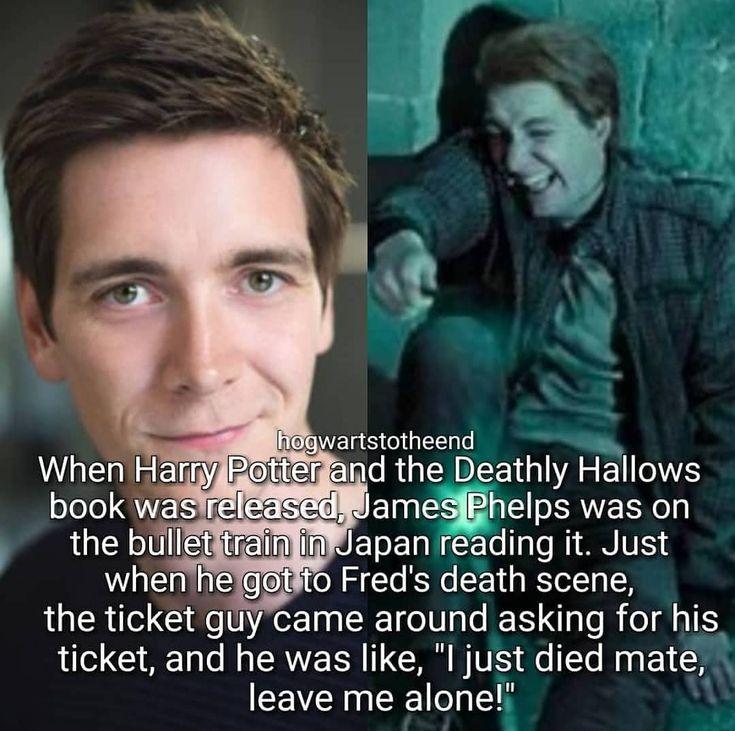 "Harry Potter, Hogwarts on Instagram: ""Did you know? Tags: #harrypotter #daniel… – Maggie Kolodziej"
