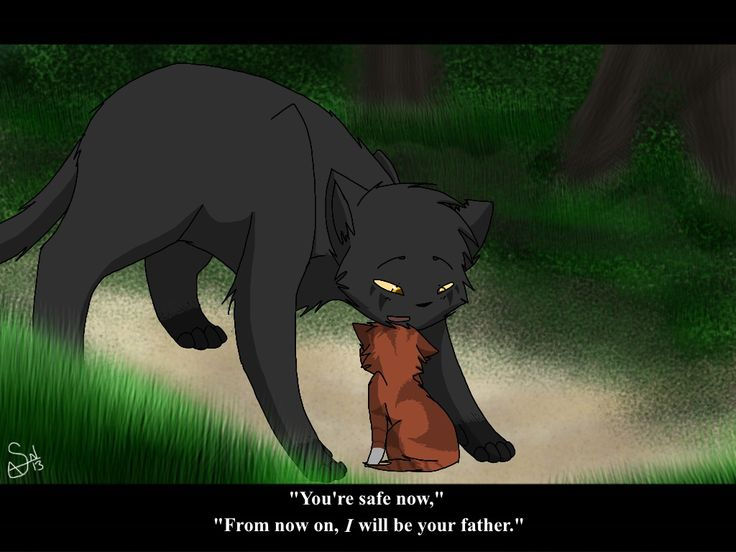 warrior cats quotes and sayings - Google Search