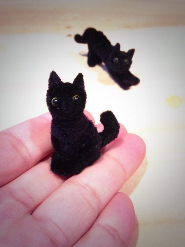 Pipe cleaner black cat