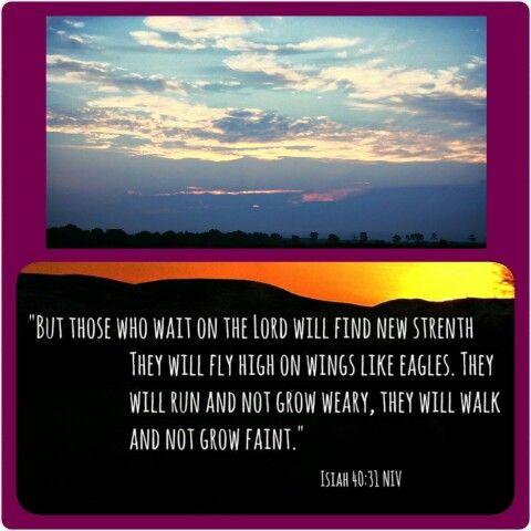 Isiah 40:31  Morning walk.