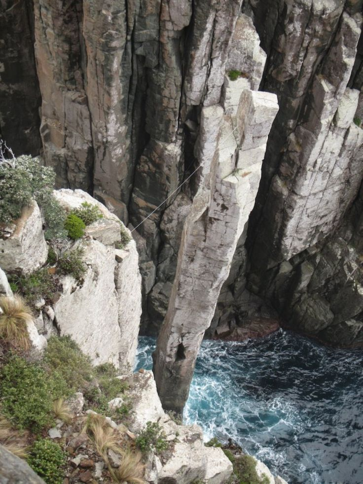 The vertical views really are something. Three Capes Track in Tasmania.  Photo: Louise Southerden