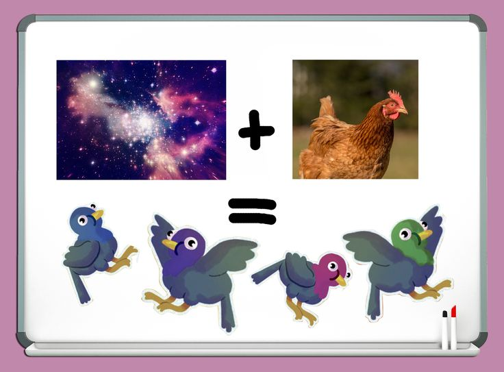 Bravest Chicken Ever: 17 Best Images About Space Chicken On Pinterest