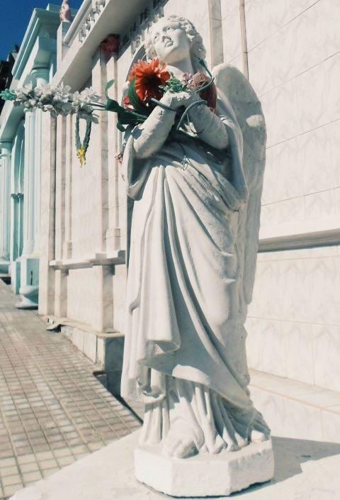 Cementerio de Antofagasta❤