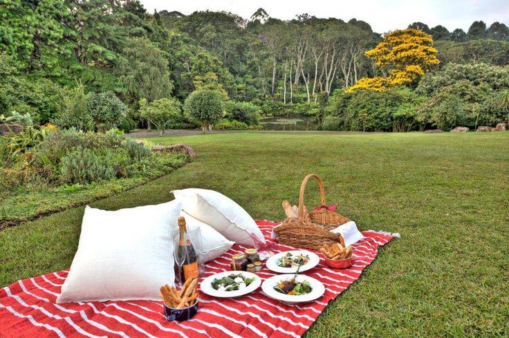 Makaranga Garden Lodge Kloof Durban