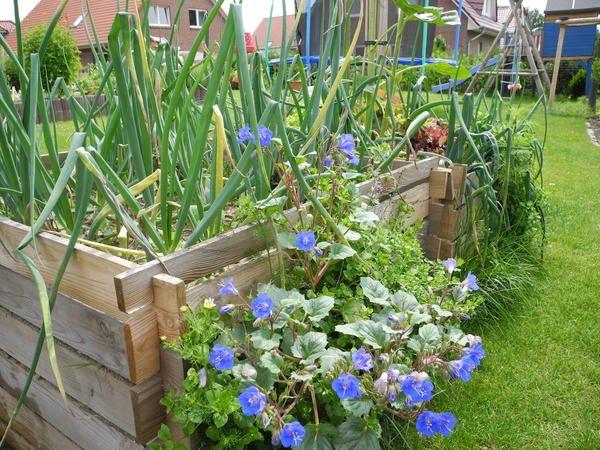 Elegant Gem se hoch beete Seite Gartengestaltung Mein sch ner Garten online