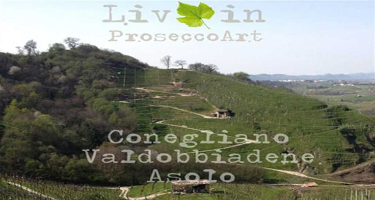 Expo Veneto: Palladio in the hills between Asolo Prosecco and Prosecco Superiore - Events