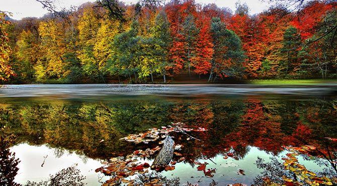 Türkiye'deki cennet 10 milli park Yedigöller Milli Parkı: Batı Karadeniz'de yer alıyor. Bolu'nun Mengen ilçesinden rahatlıkla ulaşabilirsiniz. Burada meşe, kızılağaç, porsuk ve ıhlamur ağaçlarına sık sık rastlayacaksınız. Günübirlik ziyaret değil de, bir-iki gün kalmak isterseniz hem kamp yapabileceğiniz alanlar var hem de konaklayabileceğiniz doğa evleri. Gelmişken kısa bir trekking yaparak çevreyi keşfetmeyi, içindeki şelaleyi ziyaret etmeyi ve bol bol fotoğraf çekmeyi de ihmal etmeyin…