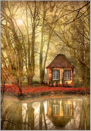 .Alsace France, Wood, Dreams, Little House, Tiny Cottages, Places, Rivers Cottages, Little Cottages, Fairies Tales