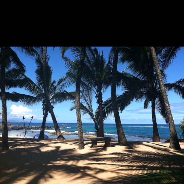142 best images about maui hawaii on pinterest trees for Fish house maui
