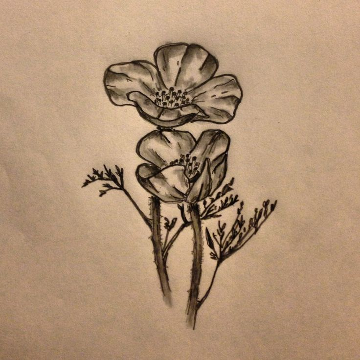 california poppy tattoo california golden poppy flower tattoo sketch by ranz poppy tattoo. Black Bedroom Furniture Sets. Home Design Ideas