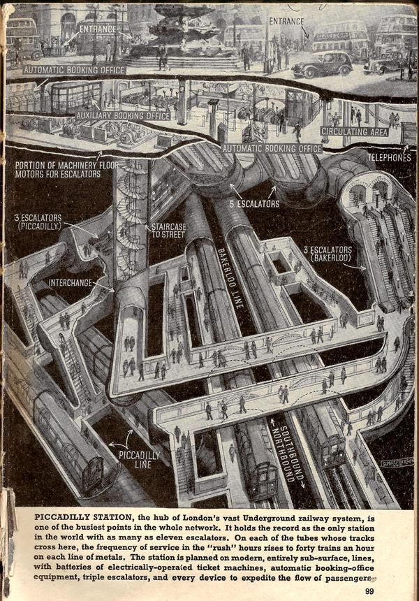 Cutaway diagram of Piccadilly Circus station by Douglas MacPherson