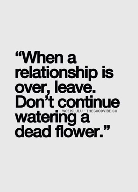 On point Relationships Quotes, Remember This, Leave, Dont Water A Dead Flower, Continuous Water, Funny Water Quotes, Rel...