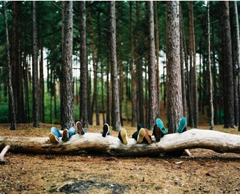 .: Photos, Ideas, Adventure, Wood, Outdoors, Forest, Camping Photography Friends, Camping Family Pictures, Photo Idea