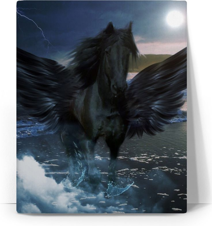 Check out my new product https://www.rageon.com/products/pegasus-and-sea-art-canvas-print?aff=BWeX on RageOn!