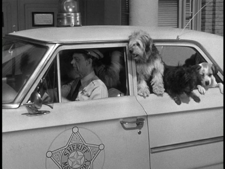 Andy And Barney In The Squad Car Season